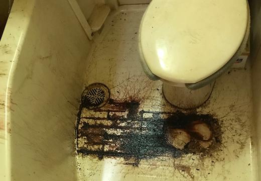 特殊清掃事例トイレ